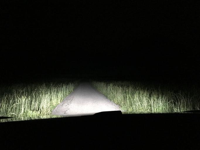 TESLA MODEL S LED Uumbau von Xenon  D8S  auf LED Licht auf der Strasse