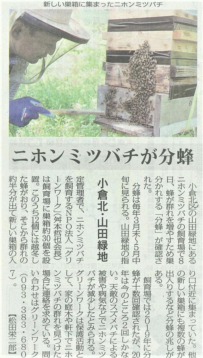 5月11日毎日新聞朝刊
