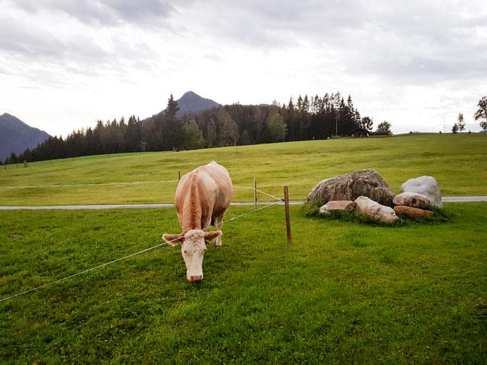 Berge, Tiere und die Welt von Heidi & Peter