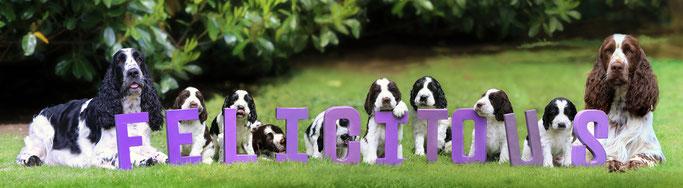 Unsere kleine Familie mit 5 Wochen... (Foto: Franka Neufert)