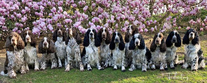 Endlich - der Frühling ist da! Wir wünschen allen Besuchern ein schönes Osterfest!