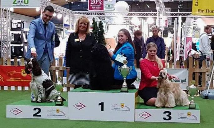 Felicitous iSplash erreichte einen genialen 2. Platz im Wettbewerb der Gruppe 8!