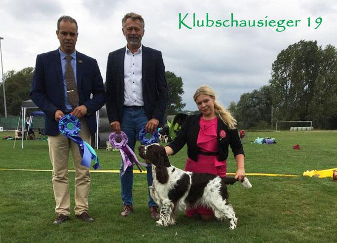 Finn gewinnt am Klubschau-Wochenende in Alsfeld bei der SRA seine Rasse und BIS-2 und wird am nächsten Tag Klubschausieger & BOS - geführt von Vanessa Hartmann!