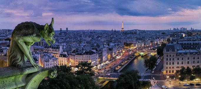 Dividenden Aktien aus Frankreich