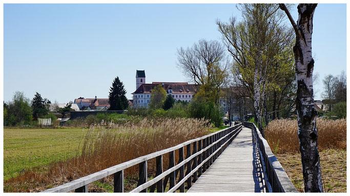 Der Federsee ist von Bad Buchau aus über einen 1,4 km langen Holzsteg zu erreichen.