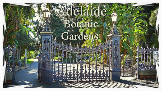 """Klicken Sie ins Bild und Sie kommen auf die Seite """"Adelaide Botanic Gardens"""""""