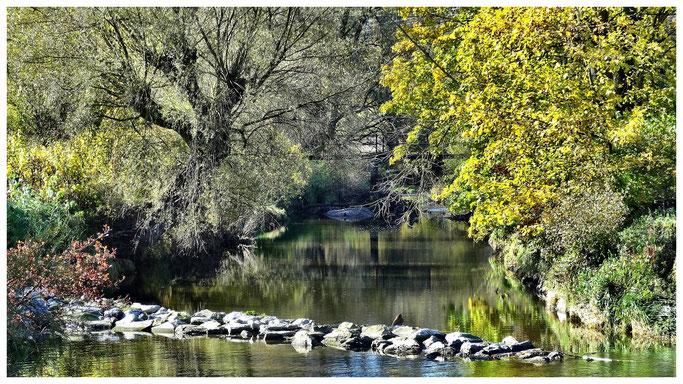 Die Günz ein kleiner Fluss bei Breitenthal