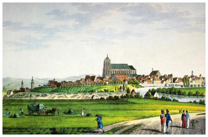 Ulm um 1840 von Süden