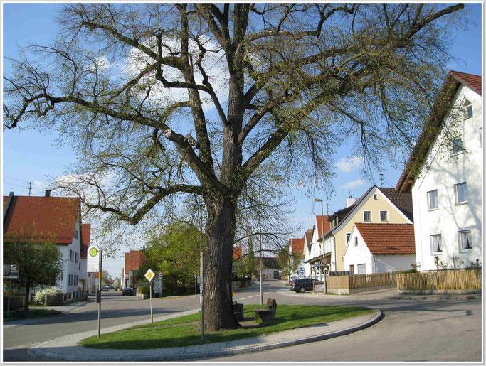 Buch 2009. Hauptstrasse und Untere Strasse.