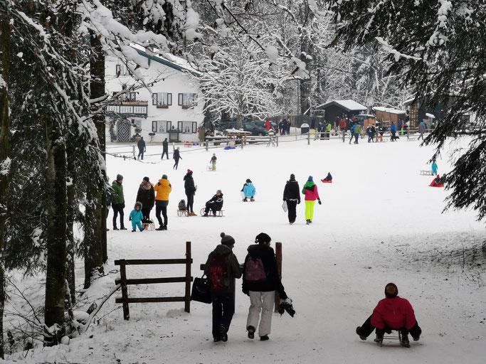 Forsthaus Adlgaß Rodelbahn