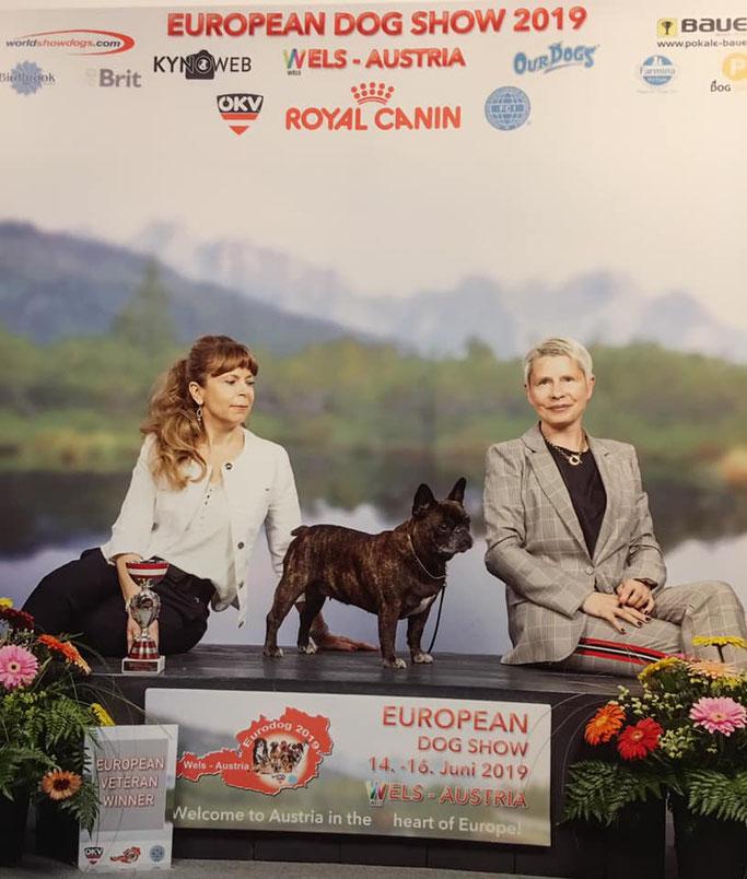 Veteranan Europasieger 2019 Berenice la Reine d'Ovilava