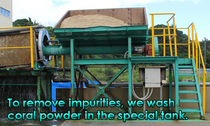 To remove impurities, we wash coral powder in the special tank.
