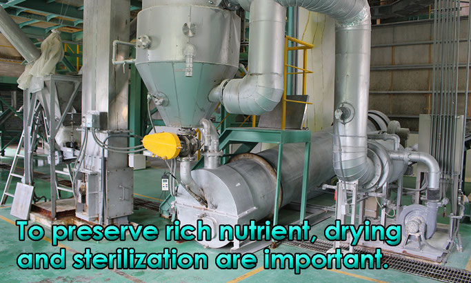 To preserve rich nutrient, drying and sterilization are important.