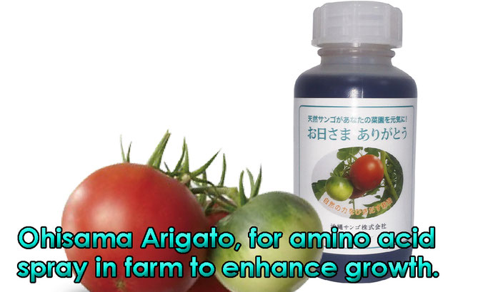 Ohisama Arigato, for amino acid spray in farm to enhance growth.