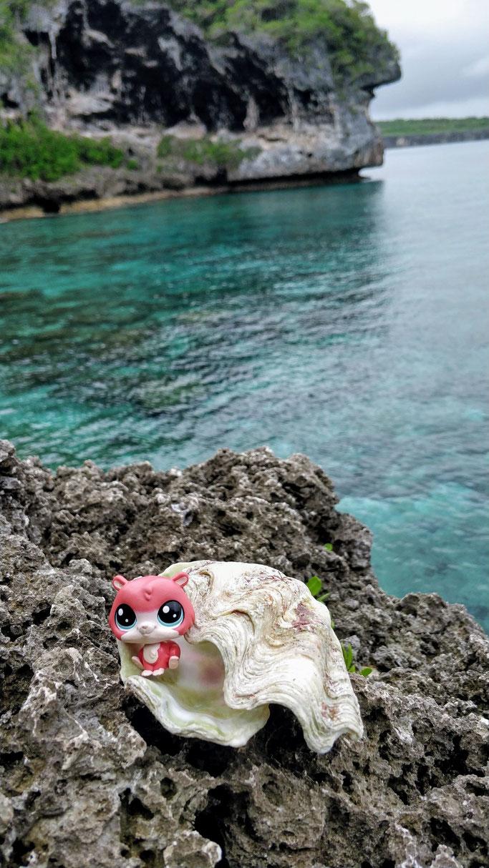 Jean-Michel, perle du Pacifique