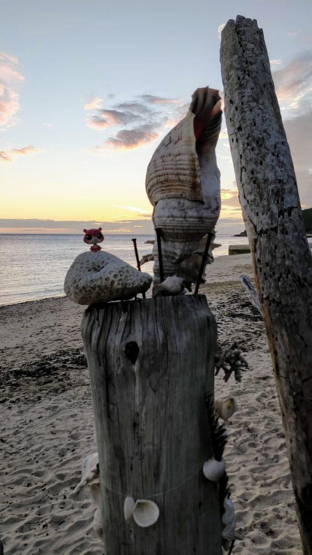 Jean-Mi au coucher de soleil sur Nouméa