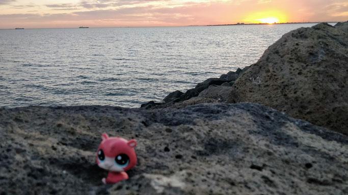 Jean-Mi profite du coucher de soleil à St Kilda