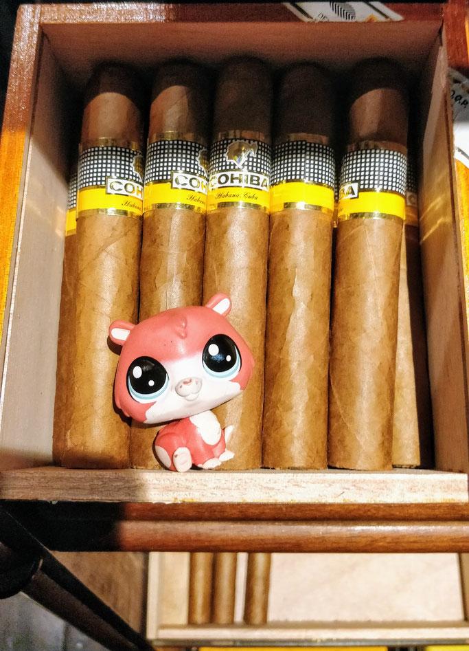 Jean-Mi a tout fumé les Cohiba