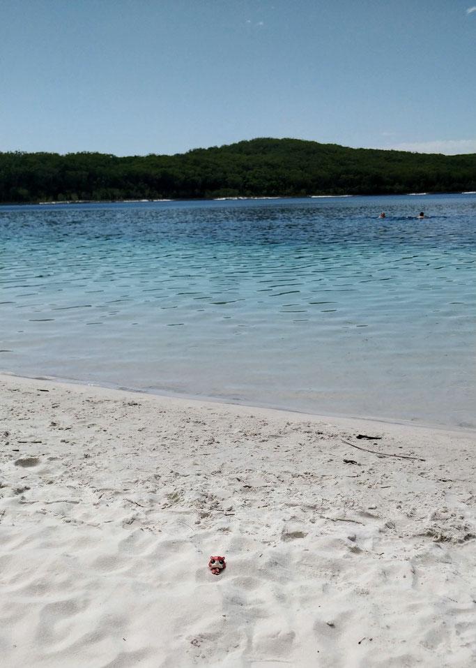 Jean-Mi chill sur le lac Mc Kenzie