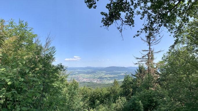 Blick über Furth im Wald vom Gläsernen Kreuz am Reiseck (Gibacht-Rundwanderung)