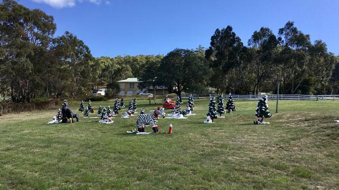 Weihnachtsdekoration in Tasmanien, Australien, 2017, Foto © Dr. Korbinian Werzmirzowsky