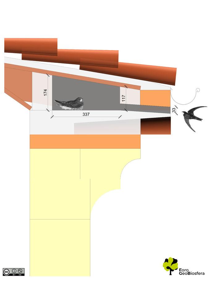 Plano lateral de la adecuación de un nidal sobre un alero del atrio.