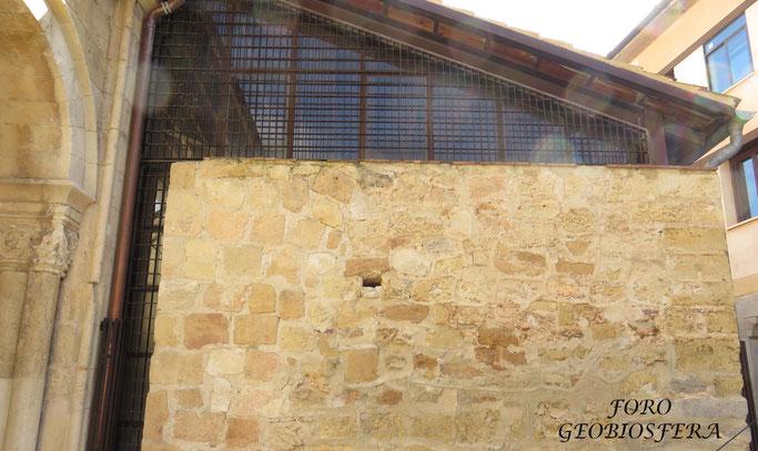 Conservación y adecuación de la entrada a un nido de vencejo existente en una de las fachadas del edificio. (Foto: F. Javier Sáez Frayssinet)