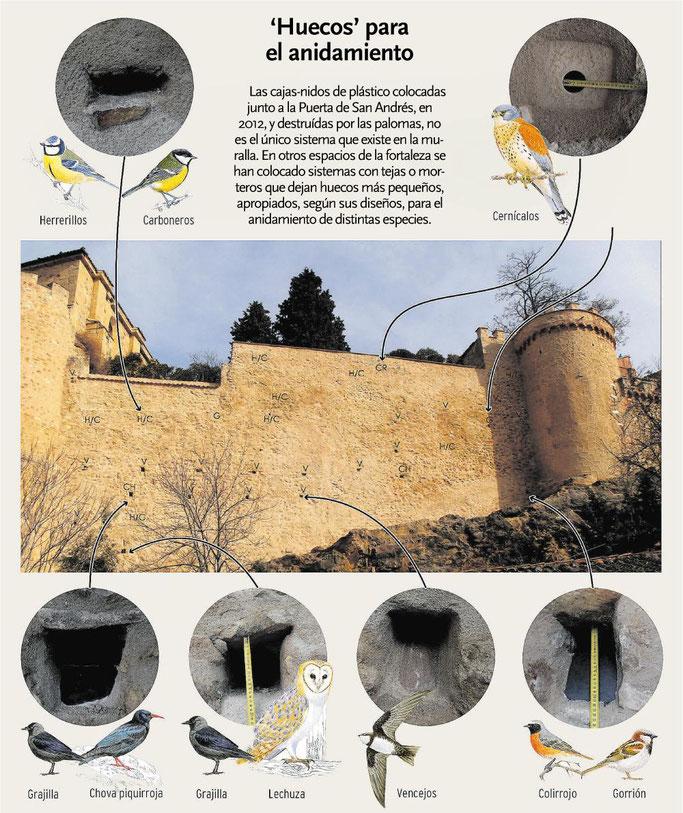 Infografía de las actuaciones desarrolladas en este paño de la muralla de Segovia. (Fuente: eldíadeSegovia.es, publicado el 19/02/2021, enlazado más abajo)))