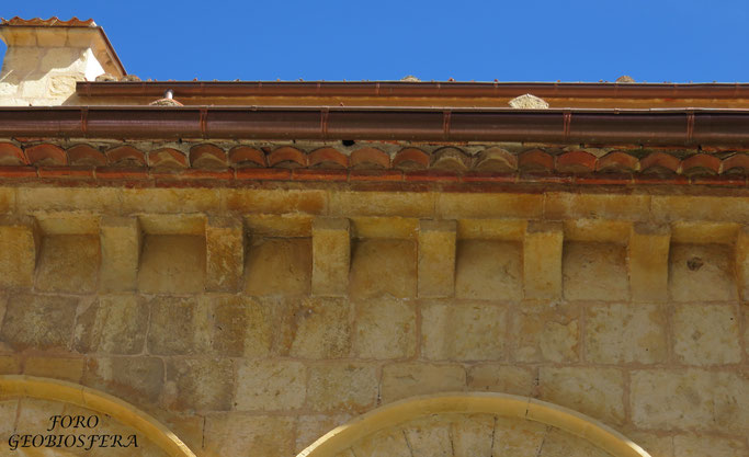 Alero de la cubierta con entrada a nidal de bajo cubierta. (Foto: F. Javier Sáez Frayssinet)