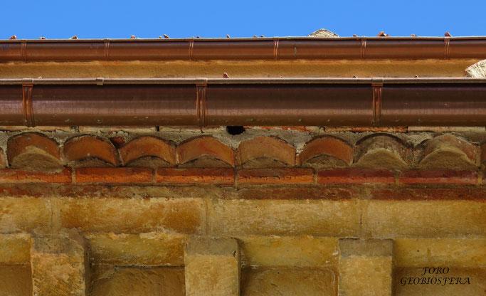 Detalle de la entrada a nidal de obra. Es muy importante que la entrada del nidal quede por debajo del canalón con suficiente espacio para que las aves puedan acceder. (Foto: F. Javier Sáez Frayssinet)