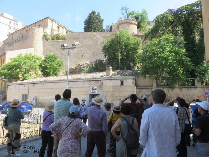 Participantes en la actividad del programa Domingos de Patrimonio de 2019 observando un tramo de la muralla de Segovia restaurado con el asesoramiento ambiental del Foro Geobiosfera. (Foto: F. Javier Sáez Frayssinet)