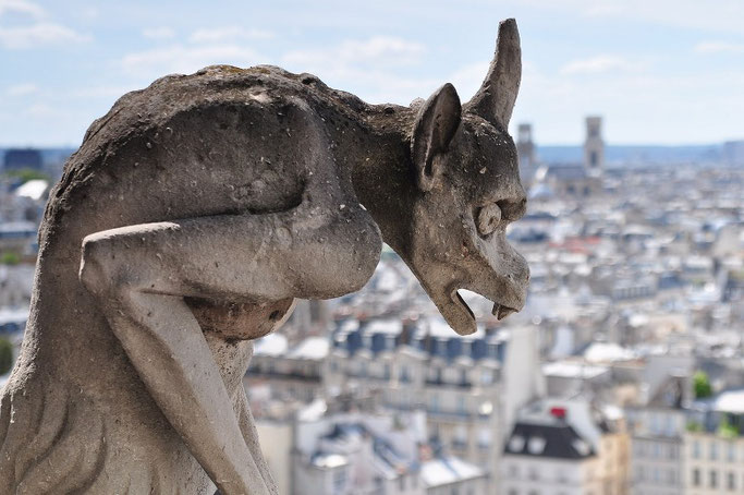 Notre Dame Paris Wasserspeier