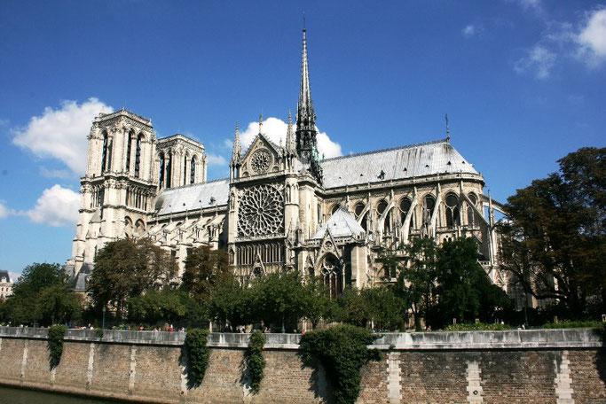 Notre Dame Paris Rosette