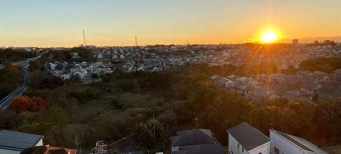 """柴田山遊水地(手前)の""""樹海""""を照らす初日の出の陽光=2021年元旦、午前7時9分。磐田市元宮町で(主要地方道磐田インター線を挟んだビジネスホテルの最上階から撮影)"""