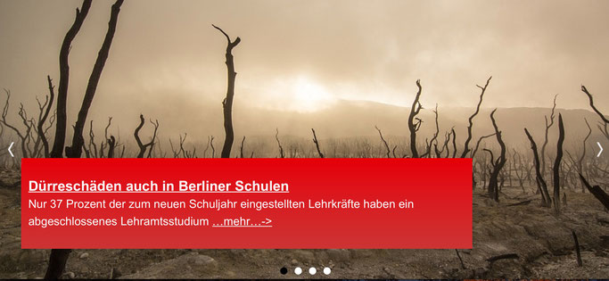 Foto: Screenshot der Berliner GEW-Website.