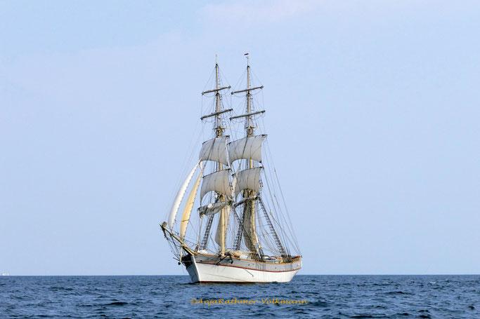Traditionsschiffe auf dem Weg nach Rostock