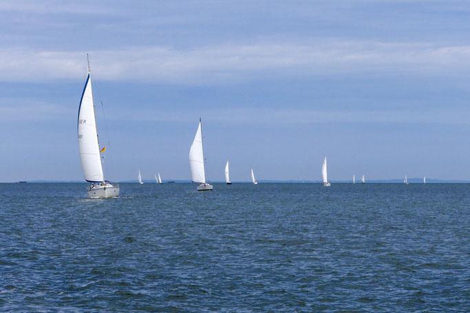 Greifswalder Bodden, Segelboote