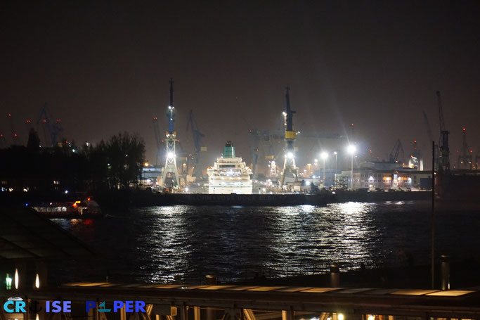 Hamburger Hafen - Blick auf die Blohm+Voss Werft