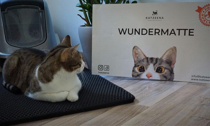 Katzenmädchen Kasi und die Wundermatte
