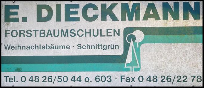 Baumschule Eggert Dieckmann aus Springhoe