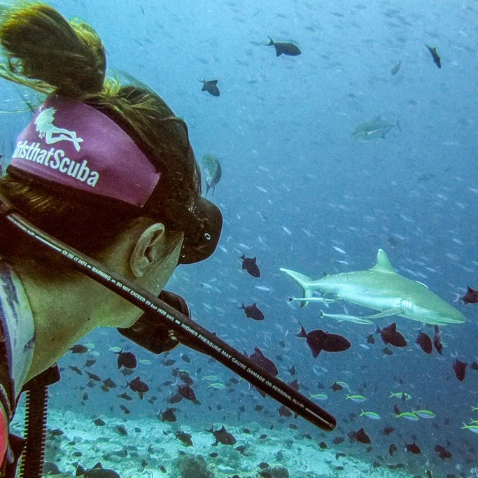 Sharks and Girls that Scuba