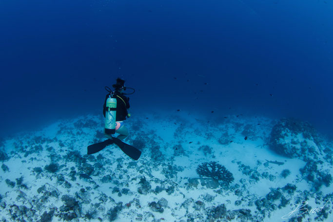 what is the difference diving with nitrox?