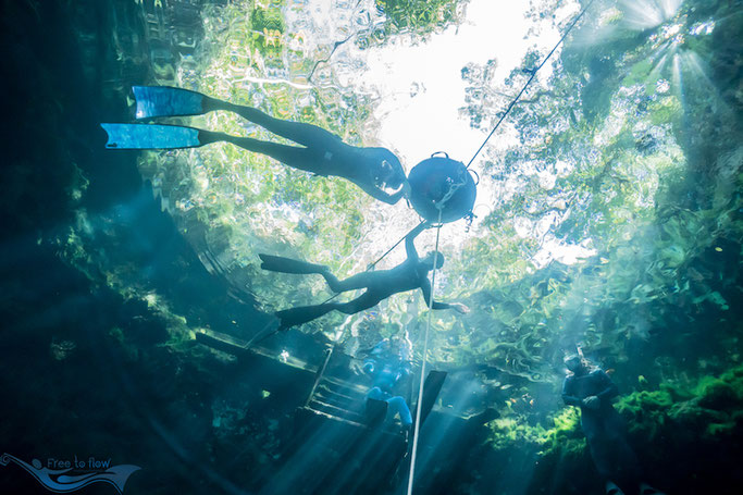 learning to freedive in Mexico