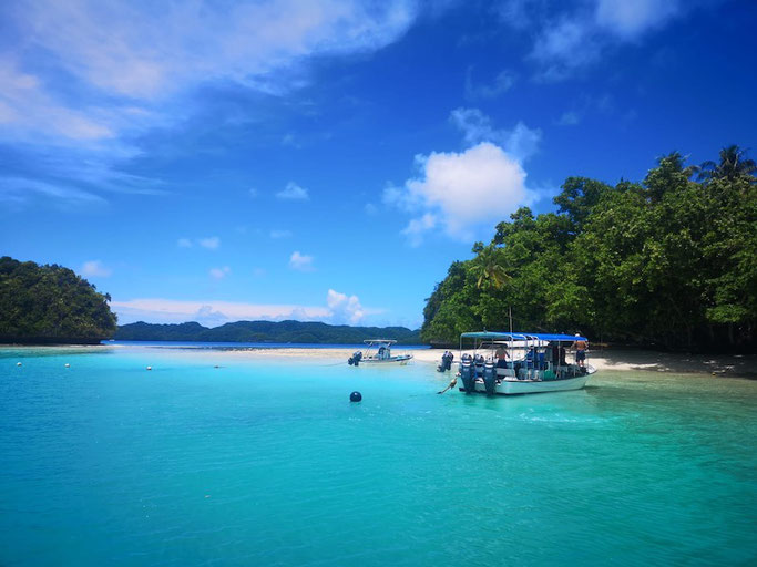 how to get to palau and scuba diving
