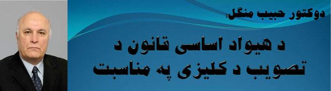 حقیقت، دوکتور حبیب منگل: د هیواد اساسی قانون د تصویب د کلیزی په مناسبت