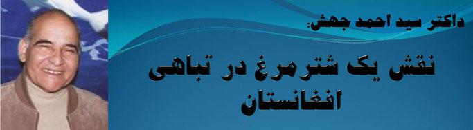 حقیقت، دکتر سید احمد جهش: نقش یک شترمرغ در تباهی افغانستان