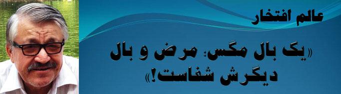 حقیقت ، محمد عالم افتخار: «یک بال مگس؛ مرض و بال دیگرش شفاست!»