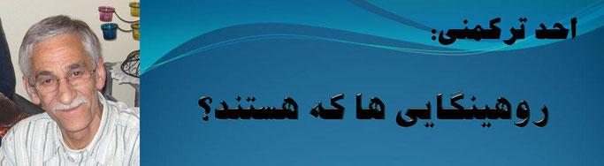 حقیقت ، احد ترکمنی: روهینگایی ها که هستند؟