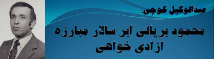 حقیقت ، عبدالوکیل کوچی: محمود بریالی ابر سالار مبارزه آزادی خواهی