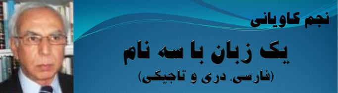 حقیقت ، نجم کاویانی: يک زبان با سه نام (فارسی، دری و تاجيکی)